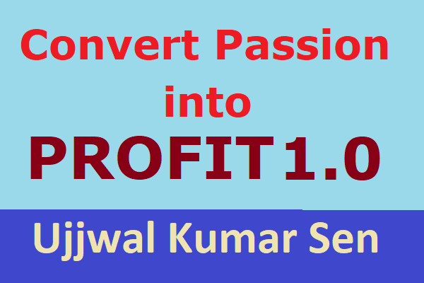 Convert Your Passion into Profit 1.0 cover